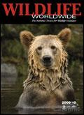 Wildlife Worldwide catalogue cover from 16 December, 2008
