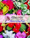 Allwoods Plants by Post brochure cover from 09 January, 2015