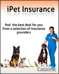 iPet Insurance brochure cover from 09 May, 2011