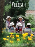 Veloso Tours - Latin America brochure cover from 20 April, 2018