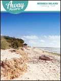 MERSEA ISLAND - ESSEX COAST HOLIDAYS  NEWSLETTER