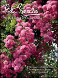 Peter Beales Roses Catalogue