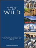 Windows on the Wild - Adventure Holidays Newsletter
