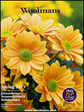 Woolmans Plants Catalogue